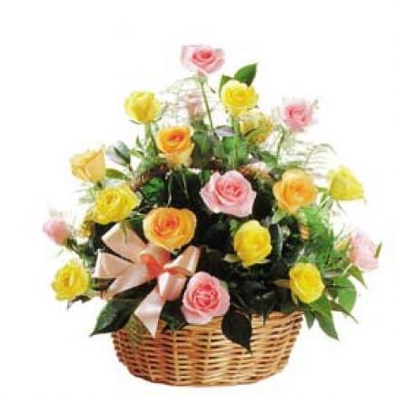 Flores Alegria Flores Desayunos Peru Desayunos En